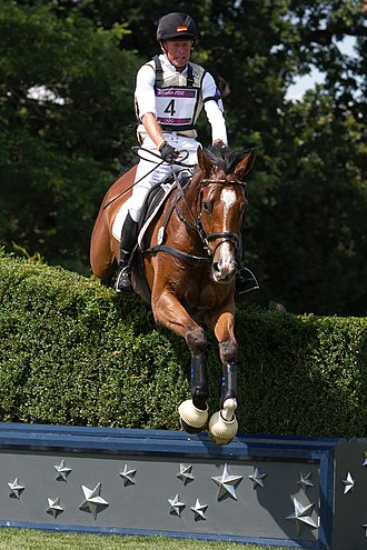 Equestrian at the 2012 Summer Olympics - Image: Peter Thomsen Barny cross country London 2012