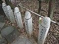 Phallus stone pole, Tagata Shrine.jpg