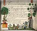 Piarista diák füzete 1806.jpg
