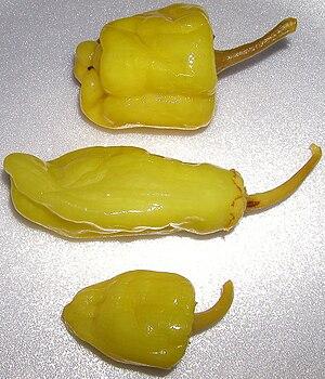 Friggitello - Several pickled friggitelli