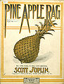PineAppleRagCover08.jpg