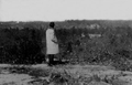 Pine Valley 1913.png