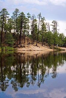 Santa Catalina Mountains Travel Guide At Wikivoyage