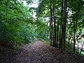 Pirna, Germany - panoramio (531).jpg