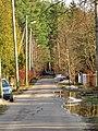 Pludi druvciema 2011 - panoramio (29).jpg