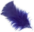 Pluma-azul-3R.png