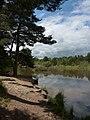 Pond view, Upton Heath - Glass Still - panoramio.jpg