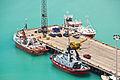 Port of Napier-4056.jpg