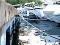Porto Ulisse-Ognina-Catania-Sicilia-Italy - Creative Commons by gnuckx (3670322673).jpg
