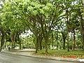 Praça em frente ao Sesc Santos - panoramio.jpg