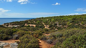 Praia da Marinha - Image: Praia da Marinha (2012 09 27), by Klugschnacker in Wikipedia (71)