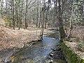 Prießnitz Dresdner Heide 2021-03-28 10.jpg