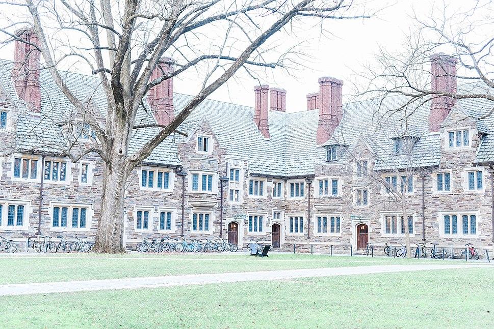 Princeton II