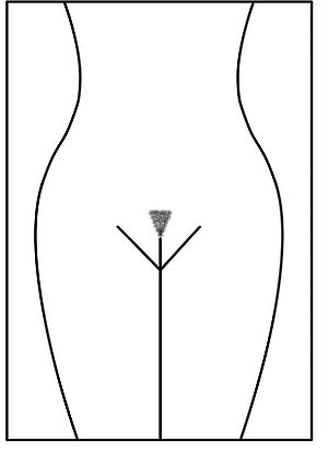 picture of woman with triangle pubic hair style