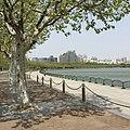 Pudong, Shanghai, China - panoramio (42).jpg