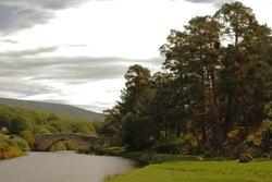 Puente de Soria (5).TIF