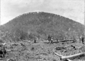 Queensland State Archives 2608 Site of training farm Beerburrum December 1916.png