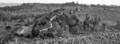 Queensland State Archives 358 Landsborough to Maleny Road looking from Bald Knob towards Maleny c 1931.png