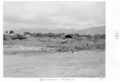 Queensland State Archives 4958 Reclaimed Land North Cairns 1953.png