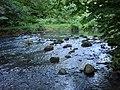 Råån strax uppströms Raus 2.jpg