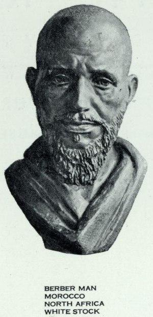 Arabized Berber - Moroccan man of Berber type.