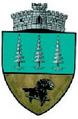ROU SV Panaci CoA.png