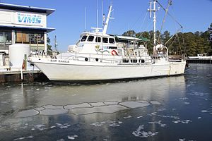 Virginia Institute of Marine Science - VIMS Bay Eagle