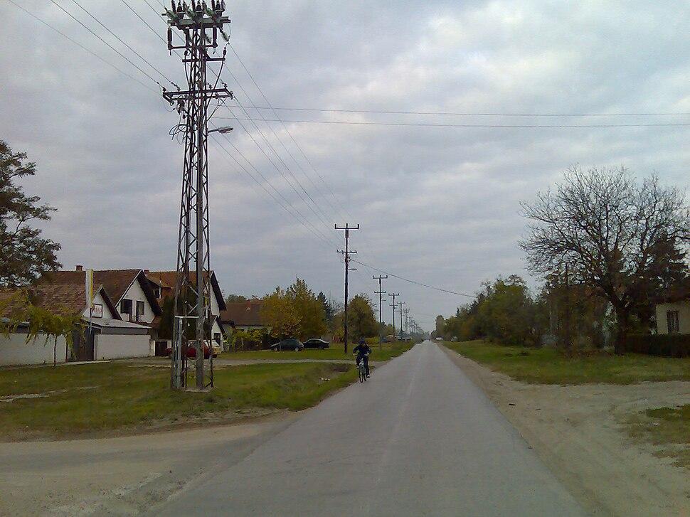 Radanovac Pescarina ulica