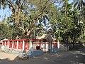 Raksha Kalitala - Baduria - North 24 Parganas 2012-02-24 2353.JPG