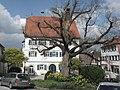Rathausplatz Obersontheim mit Dorflinde und Rathaus.jpg