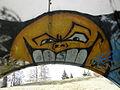 Ravensburg Graffiti im Burach.jpg