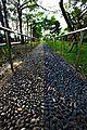 Reflexology footpath (Taiwan).jpg