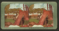 Refugees snug camp in the shades of Columbia Park, San Francisco fire-swept disctrict, from Robert N. Dennis collection of stereoscopic views.png