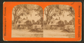 Residence of Harriet Beecher Stowe, Florida, from Robert N. Dennis collection of stereoscopic views 2.png