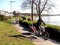 Rhein-Radweg 05.jpg