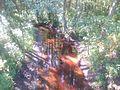 River Atkil'nya in Guta-Tkachova 03.jpg