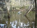 River Crossing, Dwellingup, Western Australia.jpg