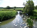 River Stour near Marnhull - geograph.org.uk - 1359209.jpg