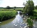 River Stour near Marnhull - geograph.org.uk - 1359209.jpg