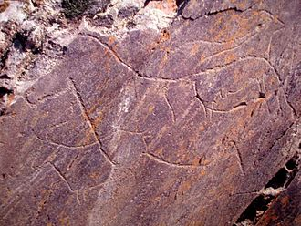 Prehistoric Rock-Art Site of the Côa Valley - Carvings of various zoomorphic creatures, including in particular, a horse