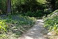 Rock Garden path at Myddelton House, Enfield, London, England.jpg