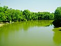 Rocky-river-tennessee.jpg