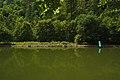 Rybník v Oklukách, Malé Hradisko, okres Prostějov.jpg