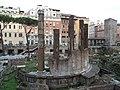 Sacred area in Largo di Torre Argentina 789.JPG