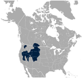 Sage Grouse Centrocercus urophasianus distribution map.png