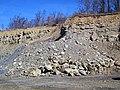 Sandstone & shale (Vinton Member, Logan Formation, Lower Mississippian; Hanover Pit, Licking County, Ohio, USA) (40666170823).jpg