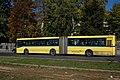 Sarajevo Bus-427 Line-31e 2011-10-18 (2).jpg