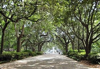 Island Trees School District Salaries
