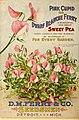 Seed annual, 1899 (16255988370).jpg