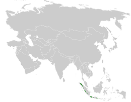 Seicercus grammiceps distribution map.png
